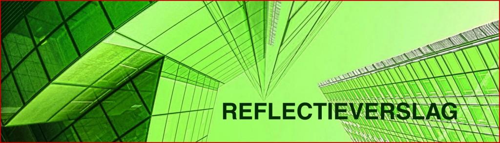 voorblad_digi_lesboek_reflectieverslag